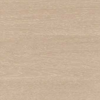 Coastal Oak Woodmatt (Textured)